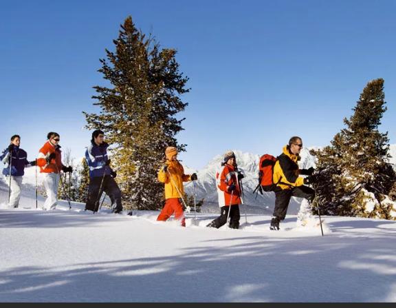 Зимние каникулы В Батайске пройдут по расписанию